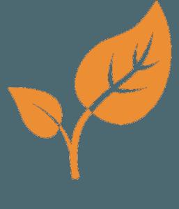Деревянные беседки в Севастополе