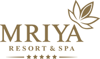 "Отель ""Mriya Resort & SPA"""
